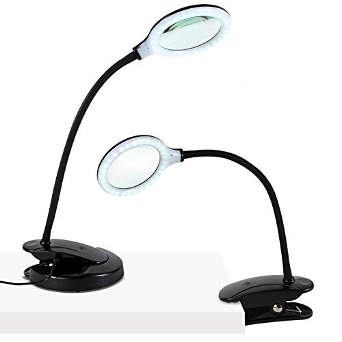 Brightech LightView Portable - Battery Powered Magnifying Glass with Bright LED Light, Stand & Clamp - Magnifying Lamp for Mobile Estheticians, Makeup Artists, Painting, Sewing, Crafts, Reading