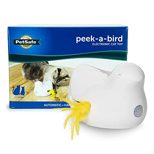 PetSafe Peek-A-Bird Electronic Cat Toy, Motion Activated Retractable Feather, Automatic Hide and Seek Teaser Toy, Interactive Ambush Bird Hunt, Fun for Kittens