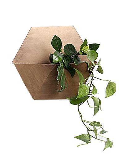 13-Zoll-Pflanzgefäß Blumentopf Pflanzenhalter für Indoor-Outdoor-Dekorationen, hängende Pflanzgefäße Halter für Moderne Wohnkultur, Pflanzenhalter