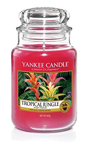 Yankee Candle Tropical Jungle, Candela profumata in giara grande, Durata Fino a 150 Ore