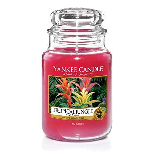 Yankee Candle Candela profumata in giara grande | Giungla tropicale | Durata Fino a 150 Ore