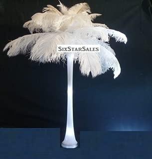 Special Sale Ostrich Feathers Wholesale Bulk 12/14