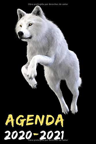 agenda escolar 2020-2021: agenda lobo, agenda 2020 2021...