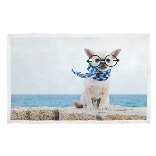 Hengpai Manta para mascotas con diseño de Chihuahua, diseño de gafas grandes, color azul