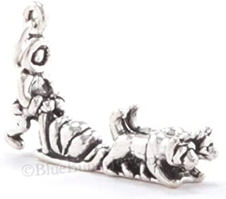 Best sterling silver alaska charms Reviews