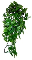 Artificial hanging plant for creating a realistic reptile habitat. An ideal hiding place for reptiles & live food. Hygienic, easy to clean & low maintenance. Can be combined with real plants. Plant size: 40cm