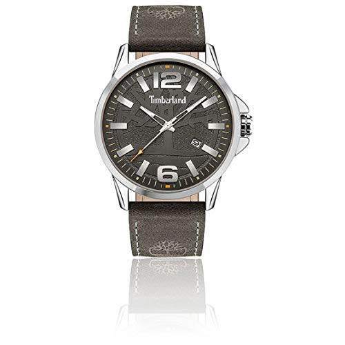 ILG ASIA LTD Reloj Analógico para Hombre de Cuarzo con Correa en Cuero TDWJB2004201