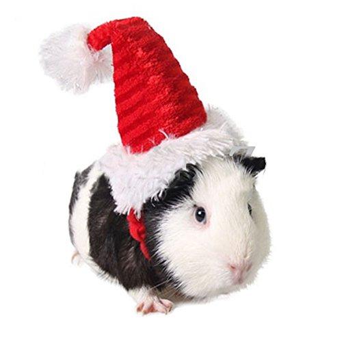 Mummumi Hund Urlaub und Weihnachten Hut Welpen Hund Weihnachtsmütze Kostüm Weihnachtskollektion Haustier Zubehör für Katze Kaninchen Hamster Meerschweinchen klein rot, a