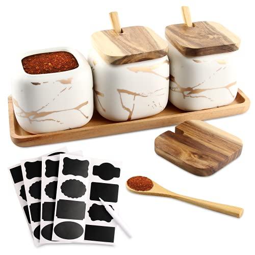 Cerámica Spice Jar Envase, Juego de 3 Especieros de Cerámica,Condimento Tarro de Especias ollas de cerámica con Tapa Cuchara Bandeja de Madera para Cocina Doméstica Azucarero y Salero (blanco)
