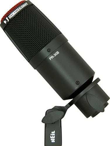 4. Heil Sound PR 30B