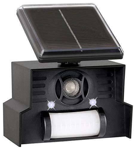 Scaccia Piccioni ad Ultrasuoni con Pannello Solare - Impermeabile - Allontana Piccioni ed Uccelli con Frequenze Ultrasoniche + Lampi Flash - Consigliato per Superfici Piccole e Soleggiate senza 220V