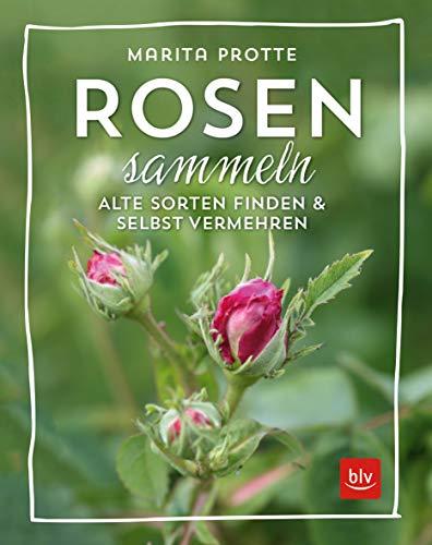 Rosen sammeln: Alte Rosen finden &...