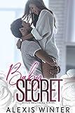 Baby Secret (Slade Brothers Book 3)