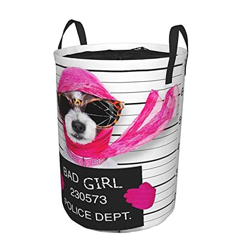Cesto de ropa sucia plegable impermeable redondo,Diva Lady Girl Dog posando para una hermosa foto de Mugshot, como un criminal y ladrón con gafas de sol rotas y bufanda,19'X14'