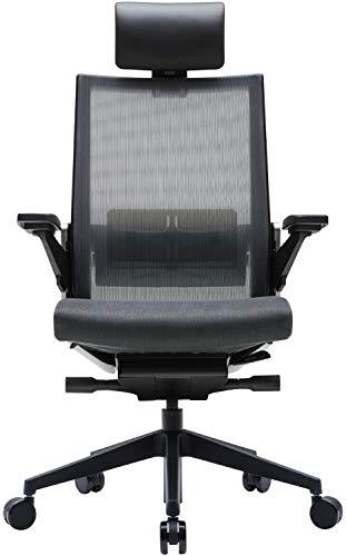 SIDIZ T80 Ergonomic Home Office Chair