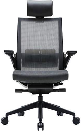 SIDIZ T80 Home Office Desk Chair : German Ultimate Sync Mechanism for Precise Adjustment, Adjustbale Headrest, Fresh Mesh Back, Lumbar Support, 3-Way Adjustable Armrests, Seat Slide/Slope