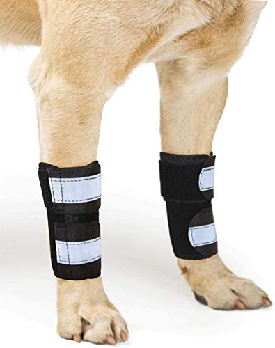 NeoAlly Pair Dog Front Leg Braces with Metal Strips Super Supportive to Stabilize and Support Canine Front Leg Wrist Carpal Joint, Prevents Leg Injuries Sprains Arthritis (Small Medium)