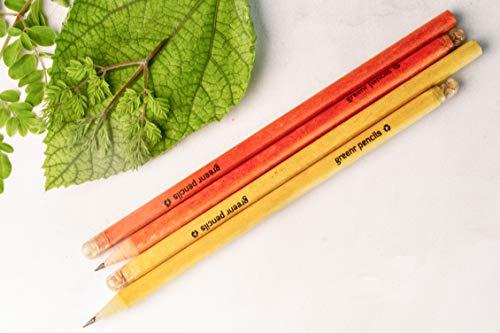Greenr Planatable Seed Pencils (10)
