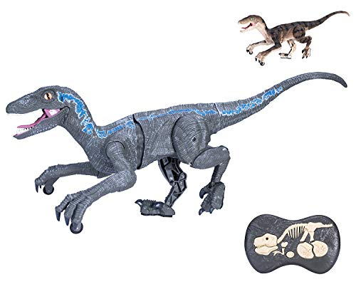 Dinosaurio Teledirigido RC Velociraptor Muy Realista! (Movimiento, Luz y Sonido) Dinosaurio Interactivo Radiocontrol con Mando Control Remoto para Niños   Robot Dinosaurio de Juguetes (Blue)