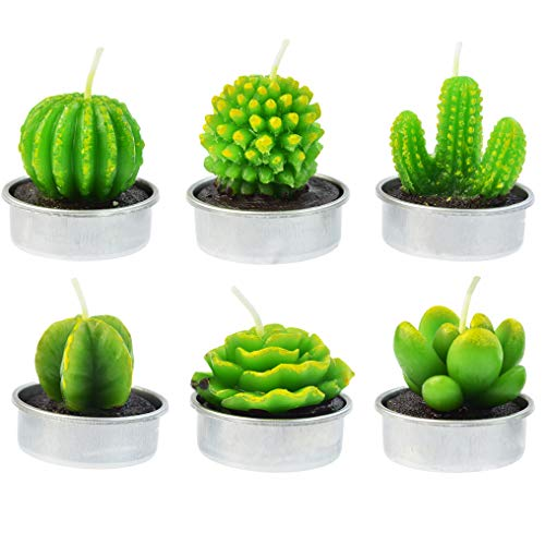 mifengda 6 Pcs Cactus Tealight Candles Delicate Succulent Cactus Candles for Valentine's Day Birthday Party Wedding Spa Home Decoration Gifts