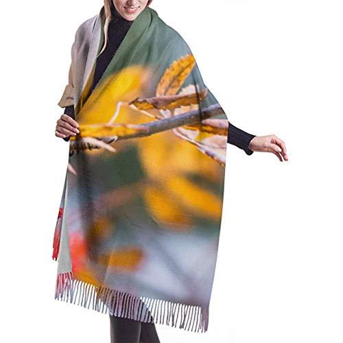Laglacefond Winter sjaal Cashmere feel zijden staart vogel herfst sjaal stijlvolle sjaal wraps zachte warme deken sjaals