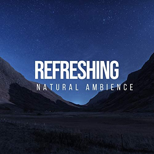 Sleep Ambience & Nature Sounds Nature Music