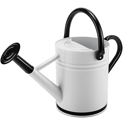 Cesun Metal Watering Can Galvanized Steel Watering Pot with Removable Spray...