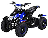 Actionbikes Motors Mini Eléctrico Niños ATV Cobra 800 Vatios Pocket Quad - Azul