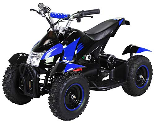 Actionbikes Motors Mini Elektro ATV Bild