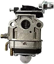 Amazon.es: carburador Desbrozadora: Bricolaje y herramientas