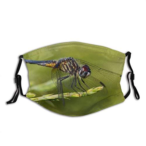 Blue Dasher Gelb Schwarz Libelle Skimmer Insekt Natur Tier Tier Flügel Nahaufnahme Wildlife Macro Sommer Mund Bandanas mit 2 Filtern