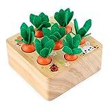Konesky Juguetes de Zanahoria, Juguetes de Madera Felly de bebé Juguetes de Habilidades motoras para niños y niñas Juego de clasificación Montessori Rompecabezas de Madera Cosecha de Zanahorias