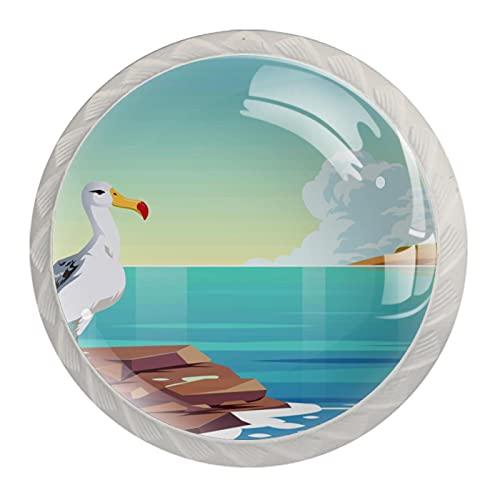 Albatros Bird, pomos de cajón para puerta de gabinete (4 unidades) redondo sólido para oficina, hogar, cocina, baño