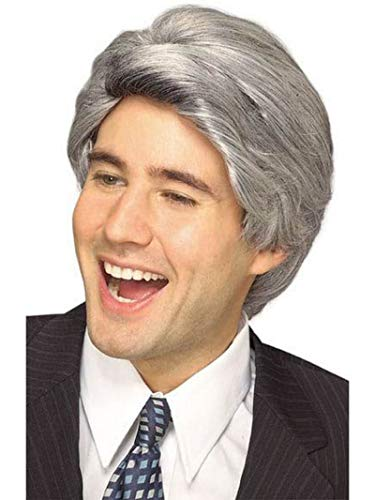Rubie's Late Night Host Character Wig, Gray, One Size