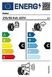 Petlas Explero H/T PT431 - 255/50R19 107W - Pneumatico 4 stagioni