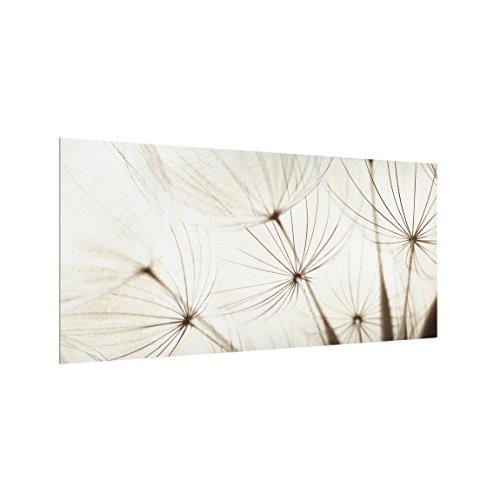 Bilderwelten Spritzschutz Glas - Sanfte Gräser - Quer 1:2, HxB: 59cm x 120cm