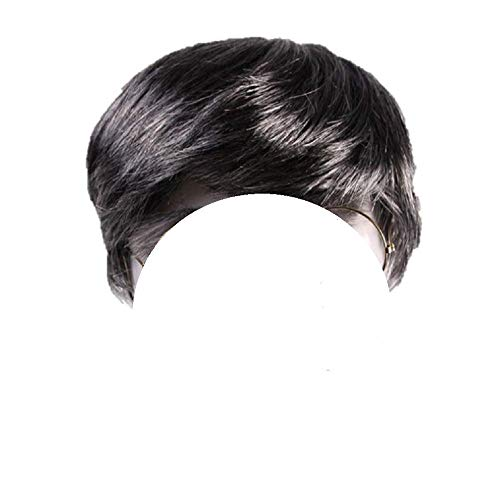Short Black and Grey Salt and Pepper Wig for Men and Women Halloween Fancy Dress Cosplay