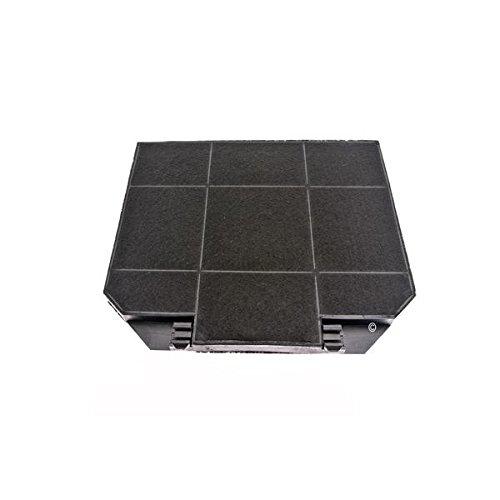 Filtro carbón (x1) campana extractora Roblin 5403008 campana Roblin Univers central 900: Amazon.es: Grandes electrodomésticos
