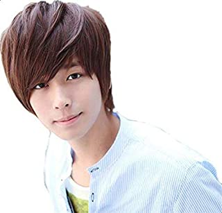 Men's Korean Wig Handsome Fluffy Short Curly Hair