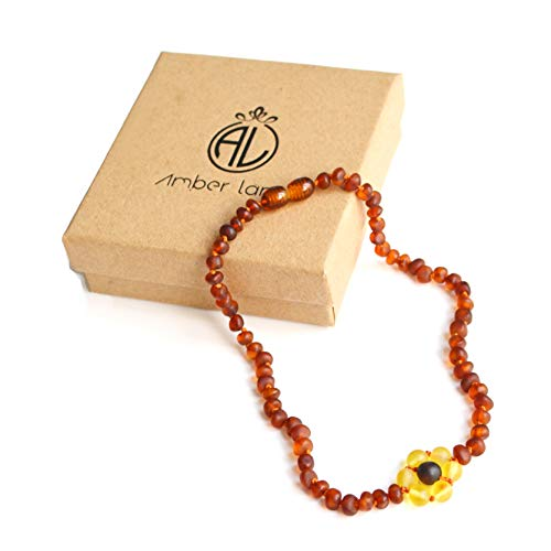 Amber Land Frosted Genuine Baltic Amber Necklace Unique Design Gift Set for Unisex 【12.5 inch】Certificated Natural Baltic Amber