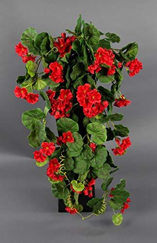Seidenblumen Roß Geranienhänger 70cm rot ZF (Modell 2018) Kunstpflanzen künstliche Geranie Kunsblumen Hängegeranie