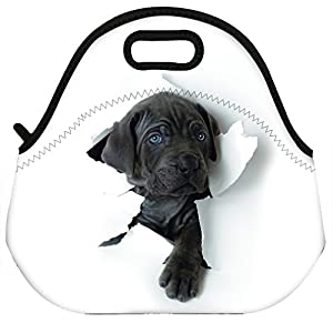 Adorable dog lunch bag