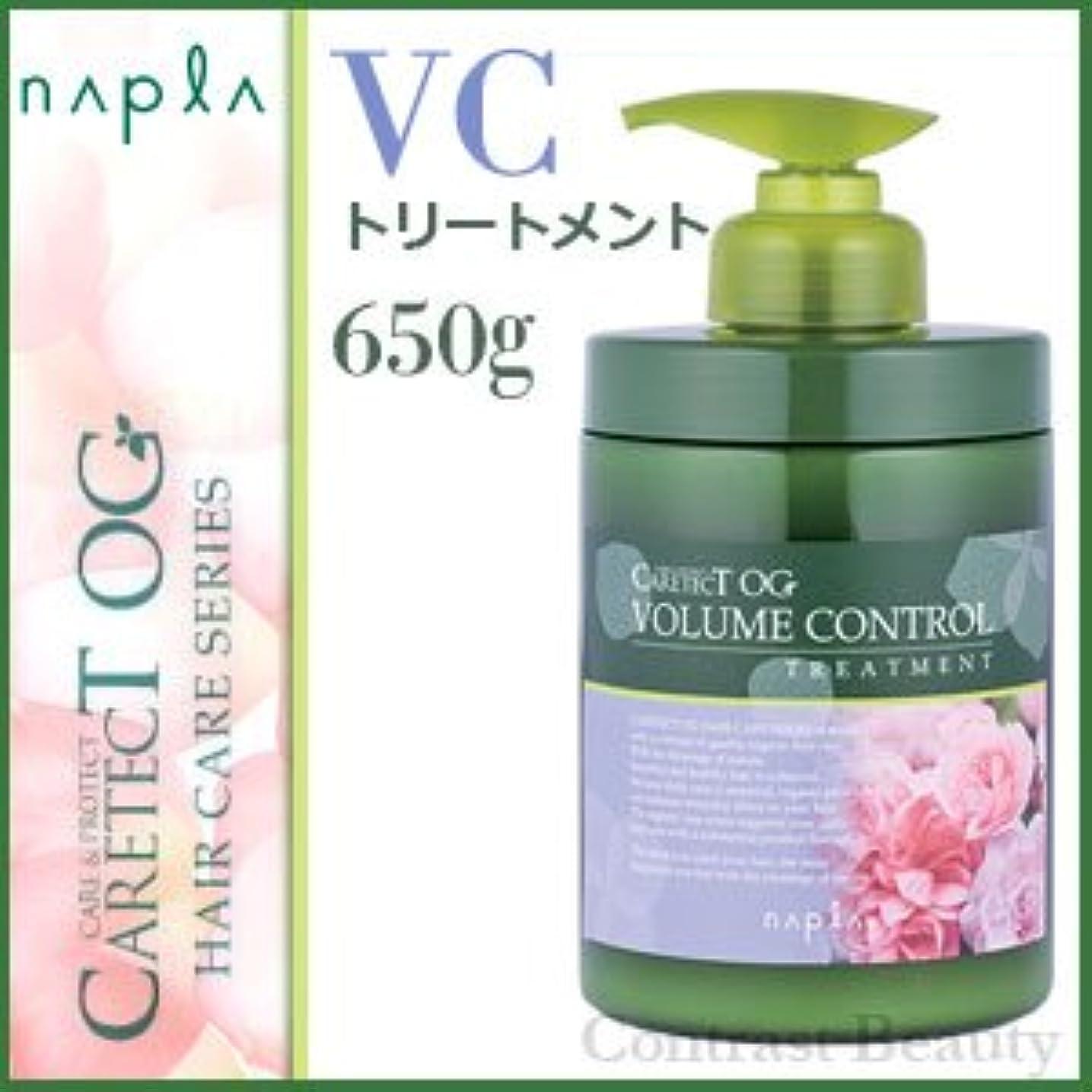 ディレクトリご飯から【X2個セット】 ナプラ ケアテクトOG トリートメントVC 650g