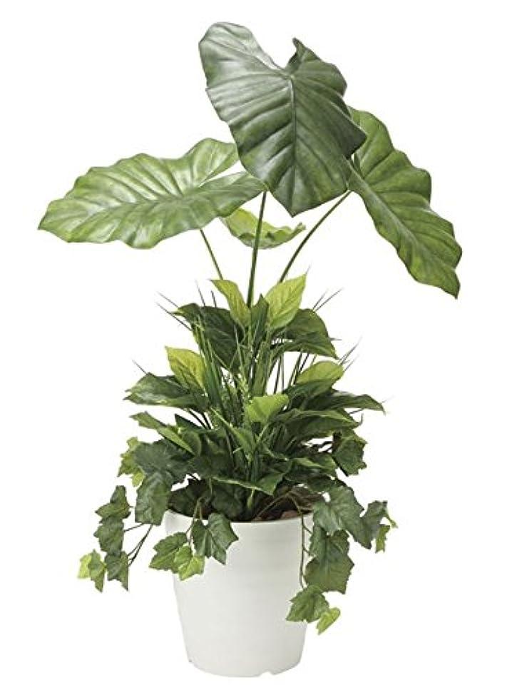 序文離れてマトン光触媒 光の楽園 人工観葉植物 タロリーフ90植栽付