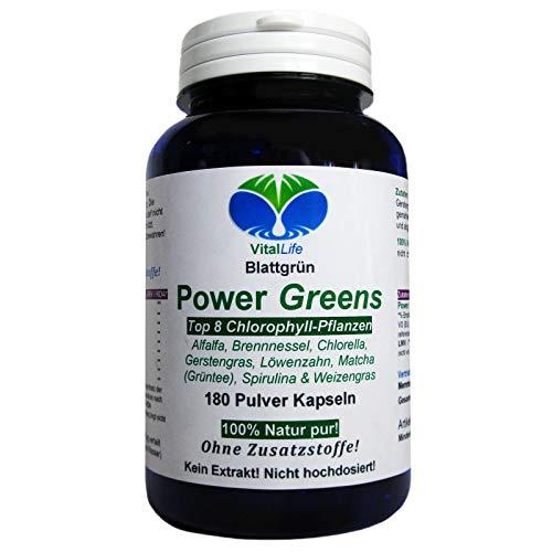 Power Greens Top 8 Chlorophyll Pflanzen 180 Pulver Kapseln Natur Pur NICHT hochdosiert KEIN Extrakt OHNE Zusatzstoffe OHNE Füllstoffe. Hergestellt und abgefüllt in Deutschland. 26332