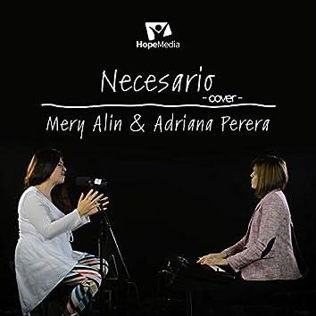 Necesario (cover)