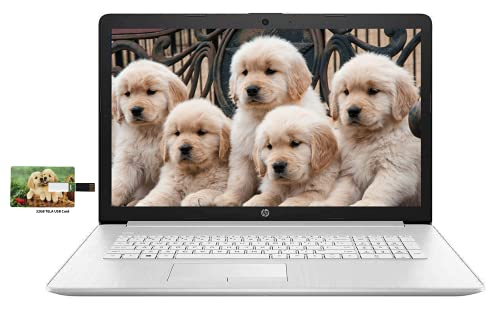 "Newest HP 17.3"" FHD Laptop for Business and Student, 10th Gen Intel Quad-Core i5-10210U 12GB RAM 256GB SSD + 1TB HDD DVD Writer, Backlit Keyboard, Win10 Pro | 32GB Tela USB Card"