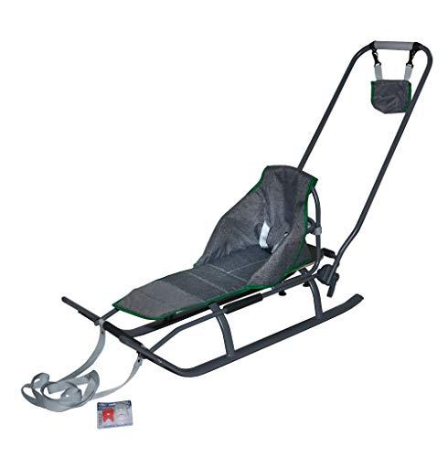 3in1 Kinder Schlitten mit Rückenlehne, Matratze, Schiebegriff und Gurt aus Aluminium … (Grey/Grey&Green)