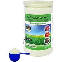 Nortembio Agro Sulfato de Magnesio Natural 1,2 Kg. Abono de Uso Universal. Favorece el Crecimiento de Cultivos, Jardines, Plantas de Interior y Exterior.