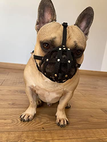 L&J Pets Uk Dog Muzzle for French Bulldog Frenchies a Other similar snouts short snout (FB0, Black)
